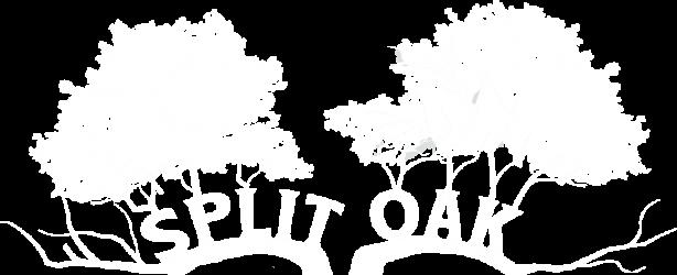 Friends of Split Oak Forest